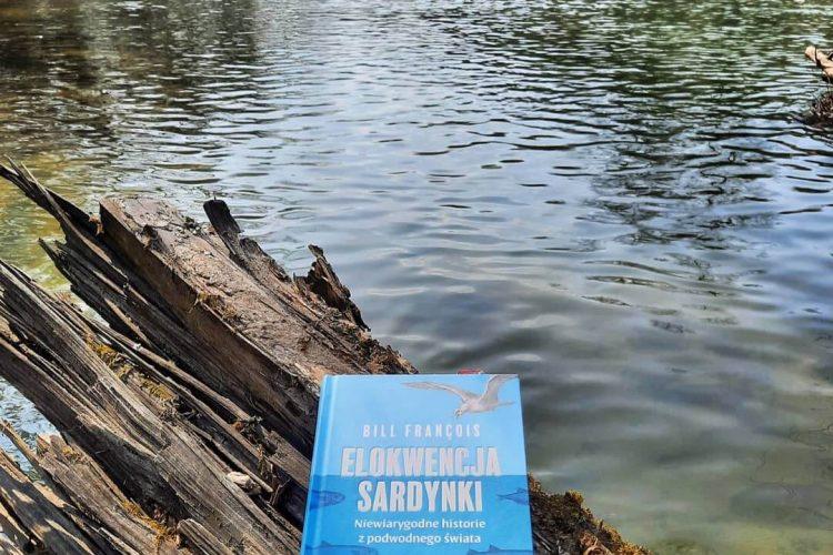 Elokwencja Sardynki